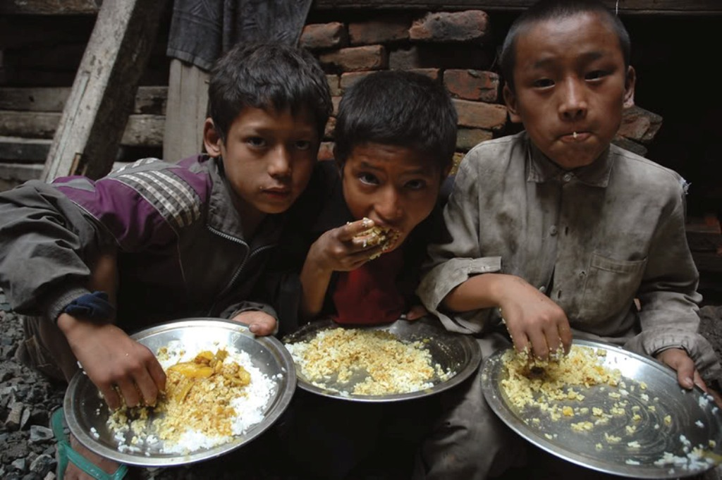 malnutrition and hunger in poor children in india essay Essay about hunger and poverty  they're trapped in severe poverty and it make their children also live in poverty and not have much nutrition to live .